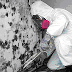 mold-removal-cincinnati-ohio