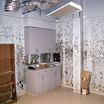 mold-remediation-cincinnati-ohio