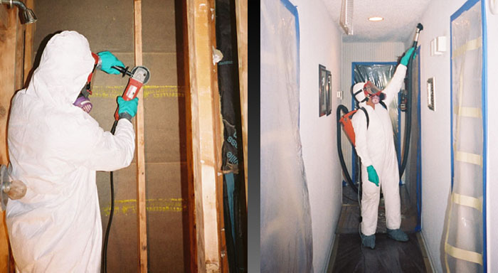 Mold-Mitigation-in-cincinnati-ohio